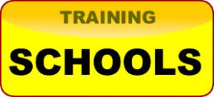 Striker Training for Schools